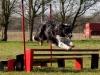 a4f-jump2